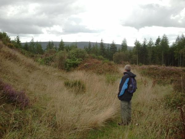 image of Andrew admiring the 3 defensive banks at the SW entrance to Bury Ditches
