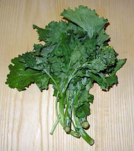 image of rapini or turnip tops